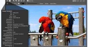 How to open PSD files in Windows 10 – McAfee.comActivate