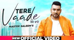 Tere Vaade lyrics- Master Saleem