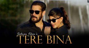 Tere Bina Lyrics – Salman Khan
